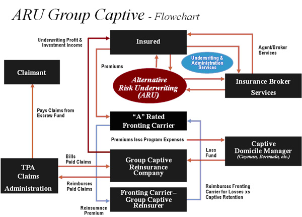 Group Captive Insurance flowchart